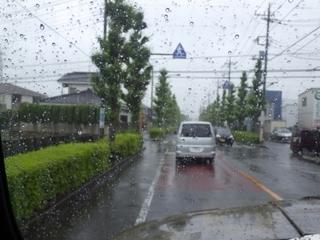 ガラコ (1).JPG