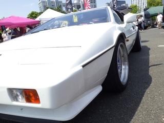 ストカー2016�D (23).JPG
