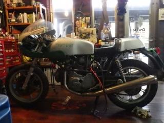 ドカティ350 (2).JPG