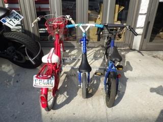 自転車保管 (2).JPG