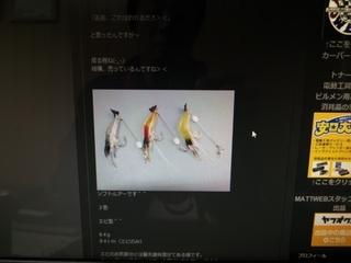 MATTWEBエビルアー (2).JPG